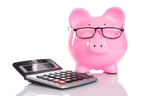 penize-uspory-finance-kalkulacka-prasatko-domacnost-1